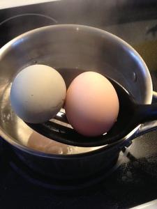 Egg Scoop